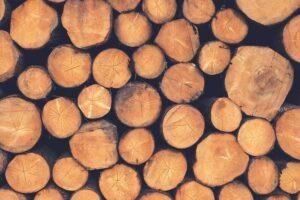 Come pulire un ceppo di legno