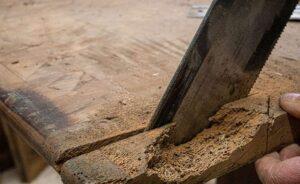 come proteggere il legno dai tarli
