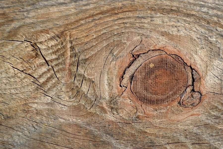 difetti del legno